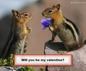 valentine, cards, and happy image