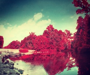 nature, place, and red image
