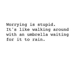 quotes, rain, and stupid image