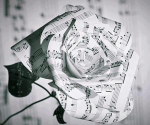 music, flower, and rose image