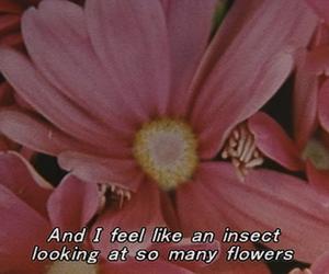 flowers and sad image
