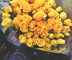 flowers, yellow, and gift image