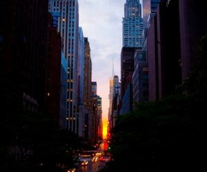 buildings, inspiration, and nyc image