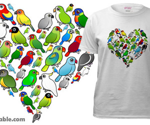 bird, parrot, and parrots image