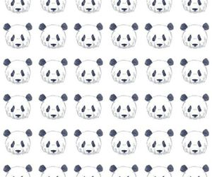 animals, pandas, and wallpaper image