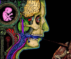 smoke, brain, and human image