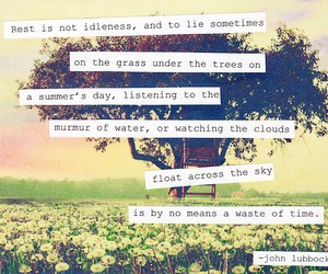 quote, tree, and summer image
