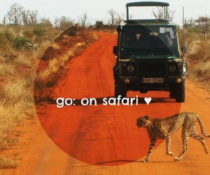 africa, before i die, and safari image