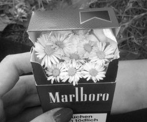flowers, marlboro, and cigarette image