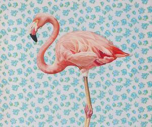 flamingo, pink, and vintage image