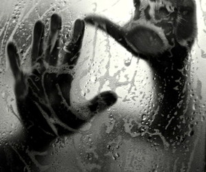 hands, sexy, and shower image