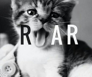 roar, cat, and cute image
