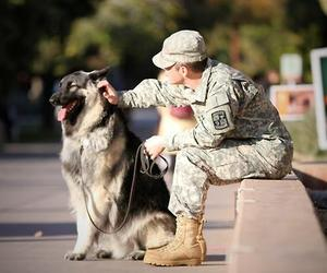 best friend, dog, and military image