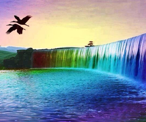 beautiful, waterfall, and bird image