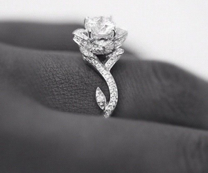 ring, diamond, and rose image