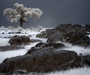 ice and landscape image