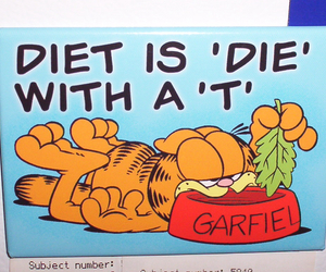 garfield, cat, and diet image