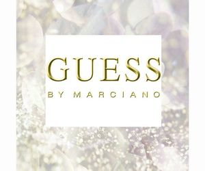 fashion, gold, and guess image
