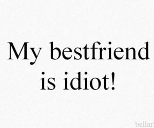 idiot, best friends, and bestfriend image