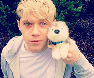 look, new, and horan image