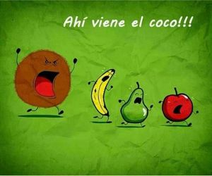 fruit, coco, and funny image