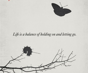 quotes, life, and butterfly image