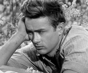 adorable, east of eden, and james dean image