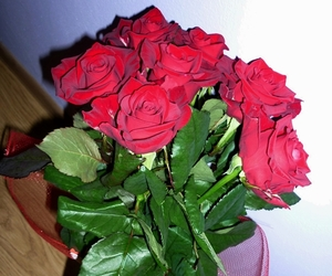 boyfriend, gift, and roses image