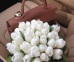 bag, for girls, and sitting in the car image