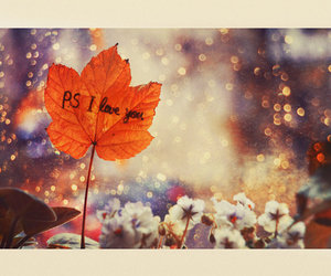 love, I Love You, and leaves image