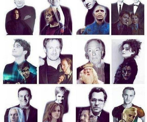 harry potter, dumbledore, and hermione granger image