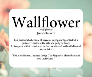 definition, quote, and wallflower image