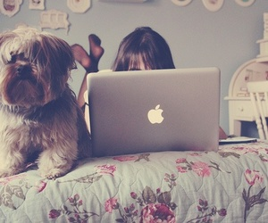 dog, girl, and apple image