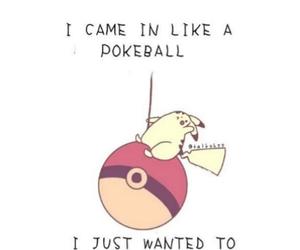 pokemon, miley cyrus, and funny image