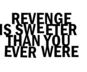 revenge, the veronicas, and text image