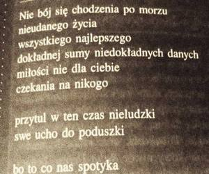 poetry, polish, and text image