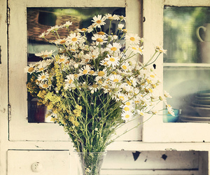 flowers, vintage, and daisy image