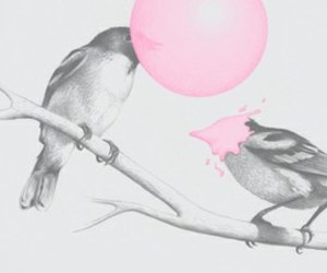 bird, pink, and cute image