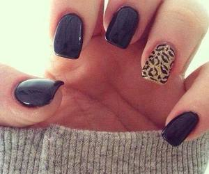 nails, black, and leopard image