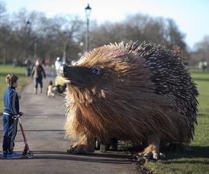 giant, hedgehog, and clapham image