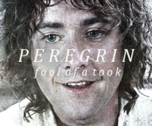 LOTR and pippin image