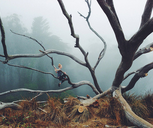 climb, forest, and girl image