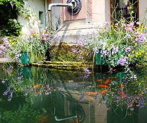 colors, flowers, and fountain image