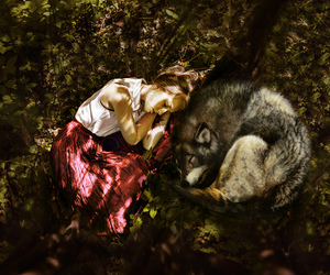 wolf, girl, and photography image