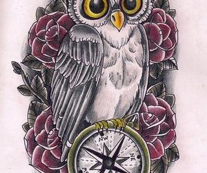 owl, bird, and compass image