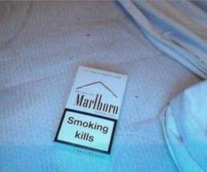 cigarette, marlboro, and pale image
