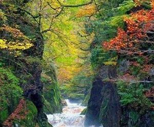 wales, conwy river, and fairy glen gorge image