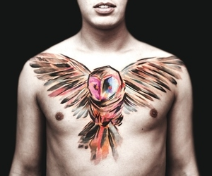 inked, watercolor tattoo, and bird tattoo image