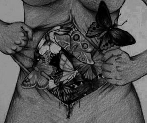 butterfly, hands, and stomach image