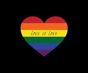 love, gay, and quote image
